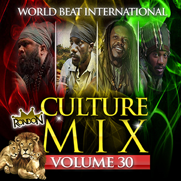 CULTURE MIX REGGAE VOL  30 (DOWNLOAD ONLY)